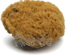 Натуральная морская губка ANZA art. 284000